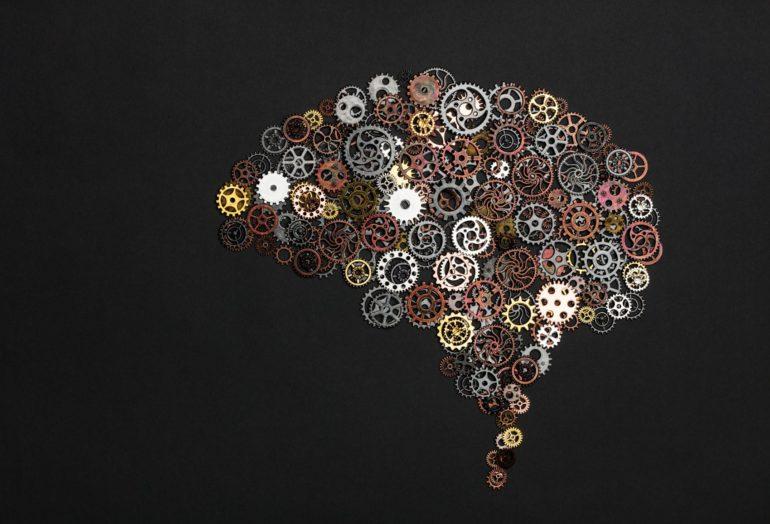 Autonomous Cars & Cognitive Brain Science: Is There a Missing Link? 15